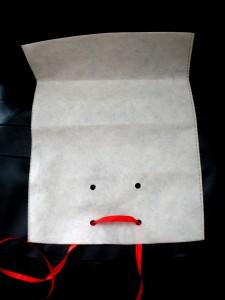 PAREIDOLIE  04 verpackung bag